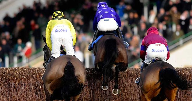 Fontwell: Boxing Day fixture handed the all clear