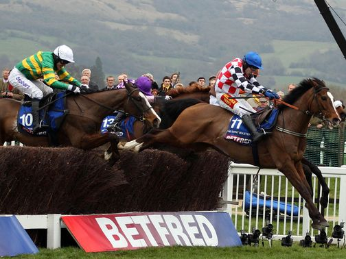 The Giant Bolster (right) is fancied to upset the odds
