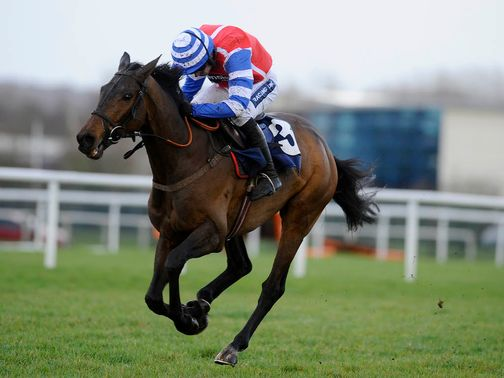 Aerial: Backed to win the Paddy Power Gold Cup