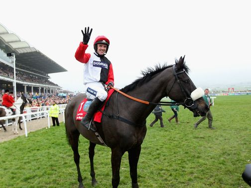 Big Buck's: Straight to next year's Cheltenham Festival