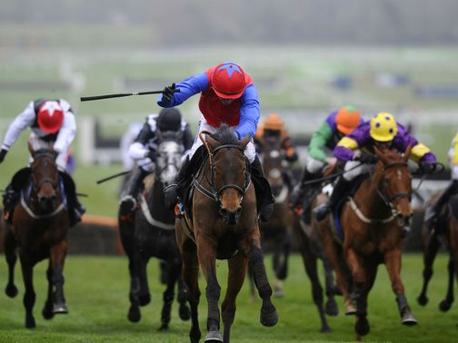 Quevega: Now favourite for the World Hurdle