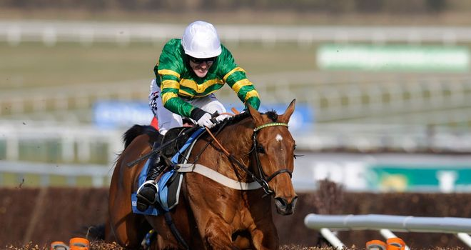 Binocular: Is his rider confident of regaining the Champion Hurdle crown?