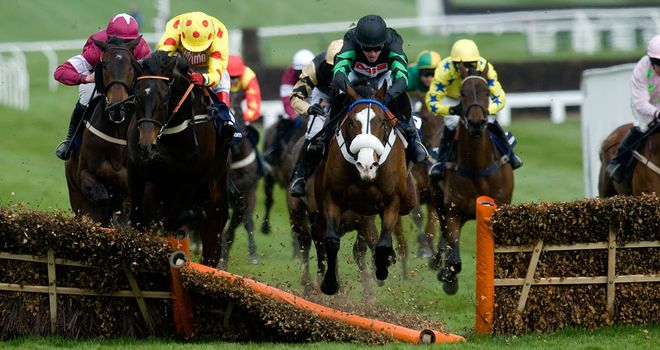 Cinders And Ashes: Straight to Cheltenham?