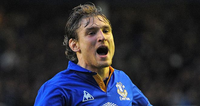 Nikica Jelavic: Everton's £5.5million January signing marked his home debut with the winning goal over Tottenham