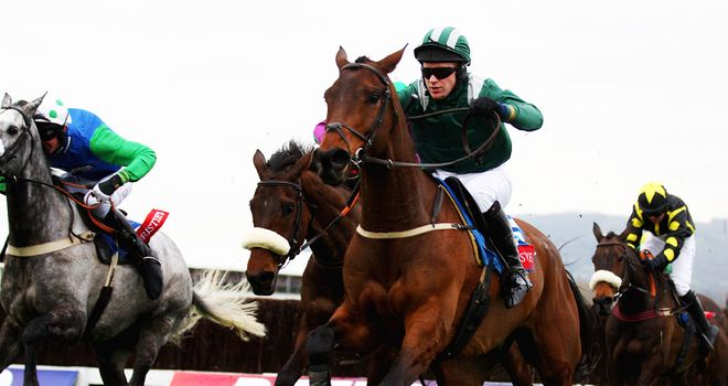 Salsify: Alex's tip for the Stratford Foxhunters Champion Hunters' Chase
