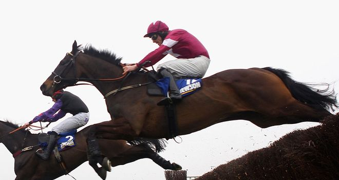 Sir Des Champs: Heads 15 entries for the John Durkan Memorial Chase at Punchestown on December 9