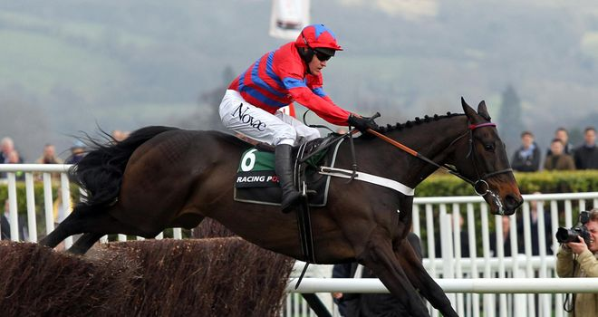 Sprinter Sacre; Due to run in the Victor Chandler Chase at Ascot