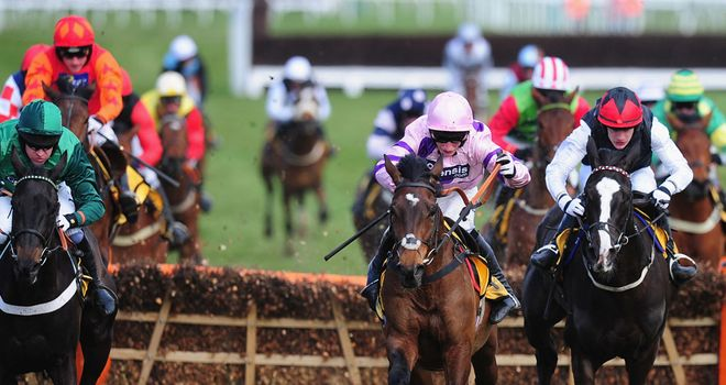 Zarkandar: Won the Kingwell Hurdle at Wincanton
