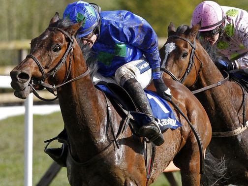 Hurricane Fly: Faces just four rivals