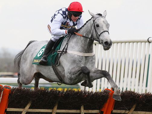 Simonsig is expected to relish a switch to fences