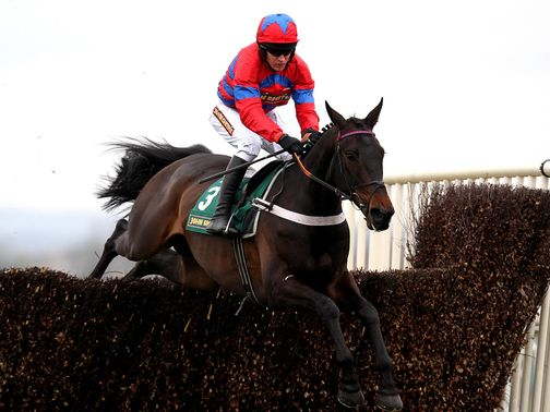 Sprinter Sacre is the headline act at Cheltenham on Sunday.