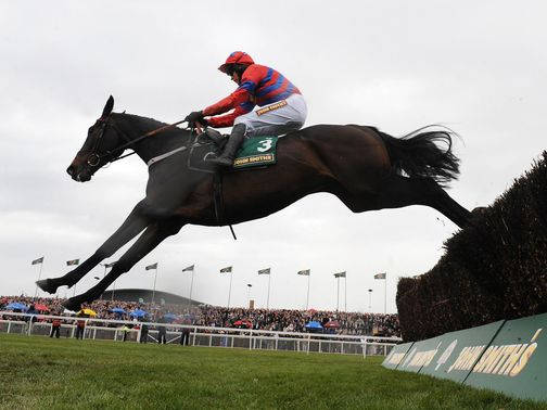 Sprinter Sacre goes for glory in the Tingle Creek.