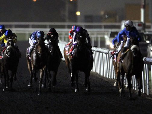 Meydan hosted the UAE 2000 Guineas