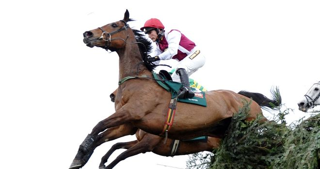 Seabass: On course for a return to Aintree