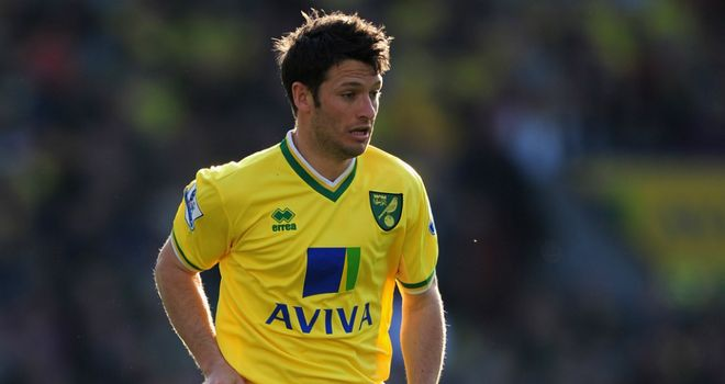 Wes Hoolahan: Could make a late push for Euro 2012 after impressing Giovanni Trapattoni