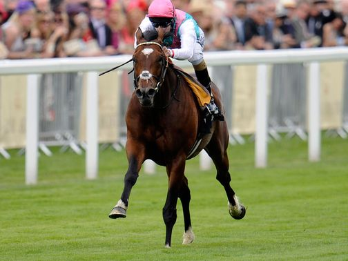 Frankel: Tops the International entry