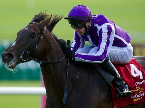 Camelot: A hot favourite for the St Leger