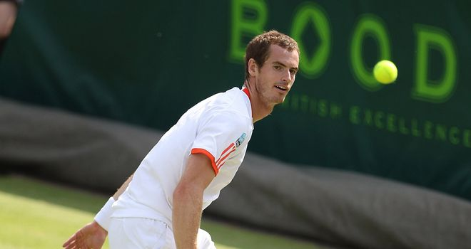 Andy Murray: Defeated by Janko Tipsarevic at Stoke Park