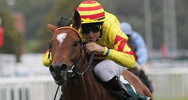 Saddler's Rock: Could run in the Cadran