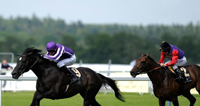 So You Think: Prince of Wales's winner