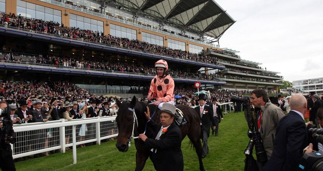 Black Caviar: Heading home to Australia and could have run her final race