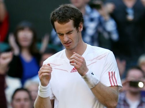 Murray: Now faces Federer in the final