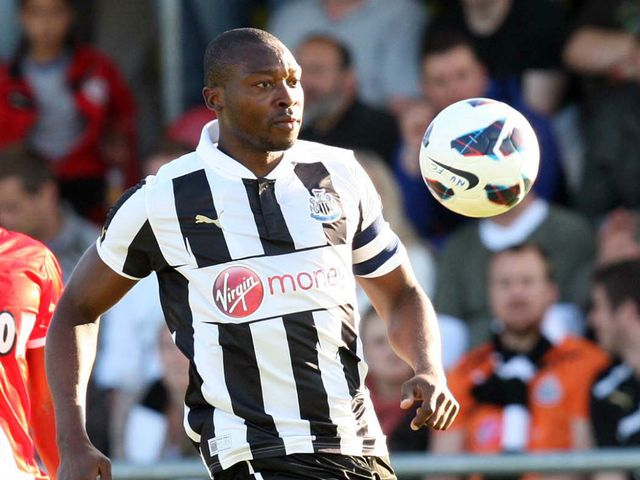 Shola Ameobi
