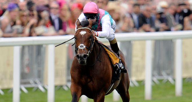 Frankel: Faces eight rivals at York on Wednesday