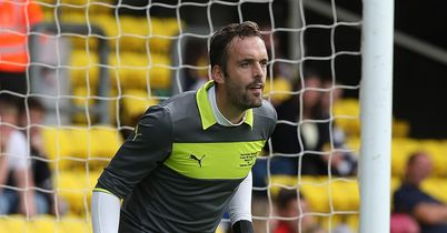 Manuel Almunia: Buoyed by big win over Leeds
