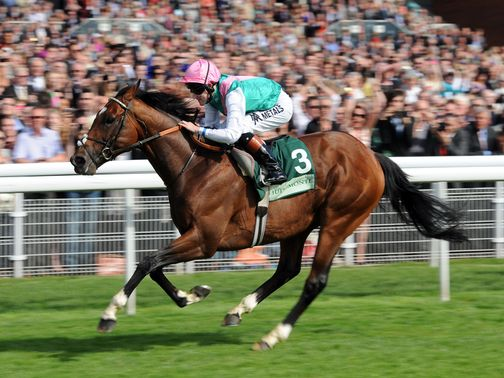 Frankel: The star of the show