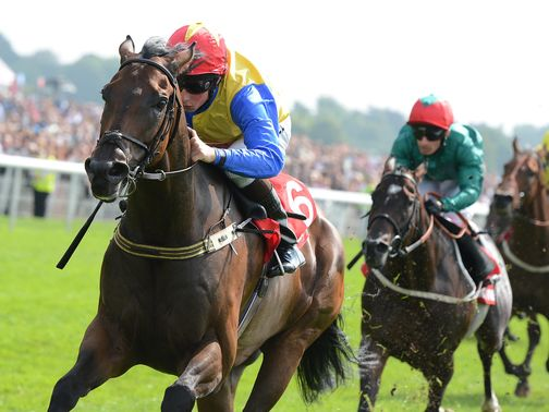 Gordon Lord Byron: Breeders' Cup invite