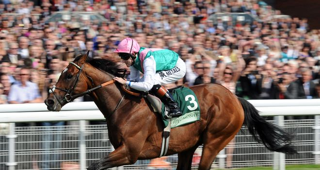 Frankel: Will have his next race at Ascot