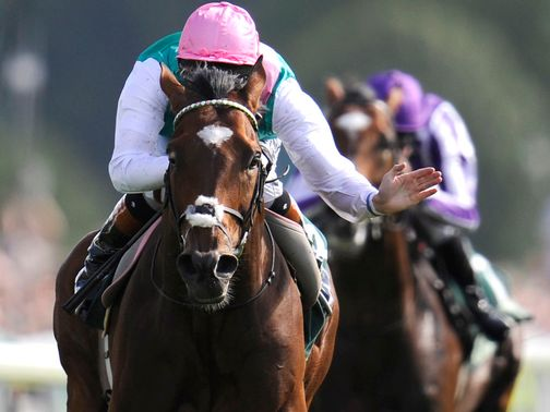 Frankel: Extra 1500 racegoers can see potentially his final race
