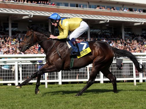 Moohaajim: Impressive in victory at Newbury