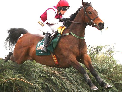 Seabass: Can underline his Grand National credentials at the weekend