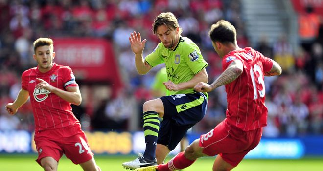 Brett Holman: Has impressed Alex McLeish since arriving at Aston Villa