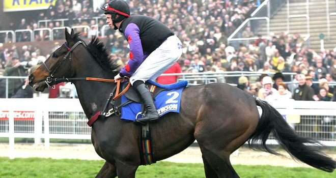 Champion Court: Heads To Kempton