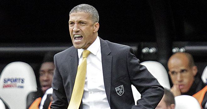 Chris Hughton: Says there were positives to take from Norwich's loss to Newcastle