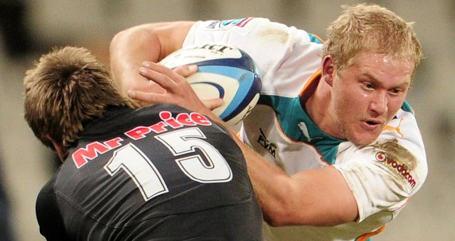 Johan Snyman: Has agreed to join the Scarlets
