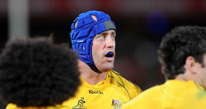 Nathan Sharpe: To captain Wallabies on European tour