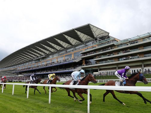 Ascot: two market movers this afternoon