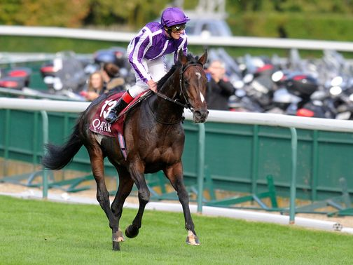 Camelot: &#39;Could be something unbelievable next year&#39;