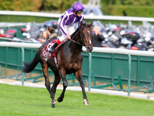 Camelot: Returns to the Curragh on Monday