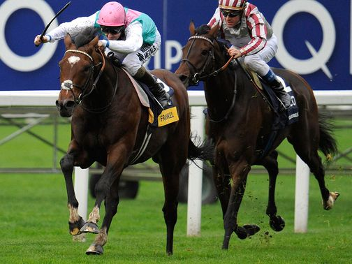 Frankel: Imperious at Ascot