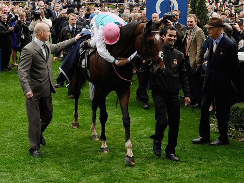 Frankel: A full brother has been born