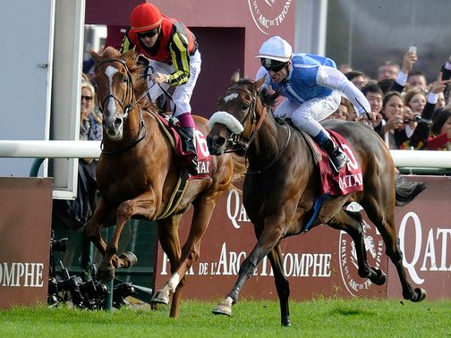 Orfevre (L) can gain his revenge on Sunday