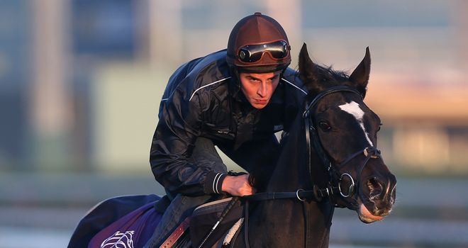 The Fugue: Third after enduring tough trip through the race