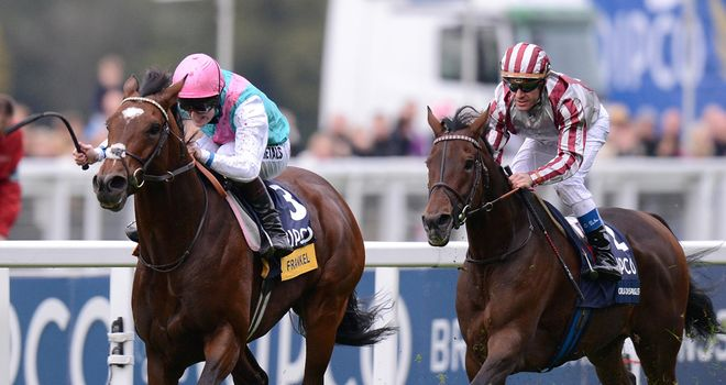 Cirrus Des Aigles chases home Frankel at Ascot