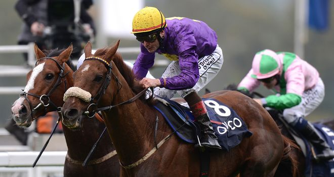 Rite Of Passage: Could return to Ascot next June