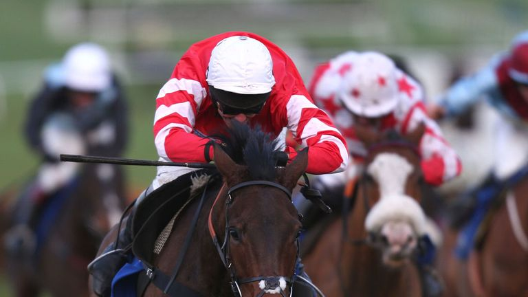 Coneygree: Could step out of novice company for the World Hurdle